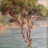 Italian Bay detail