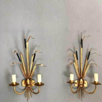 Bullrush wall lights