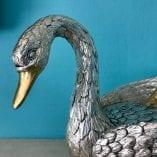 Swan IB 2