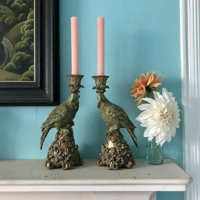 Parrot candlesticks main