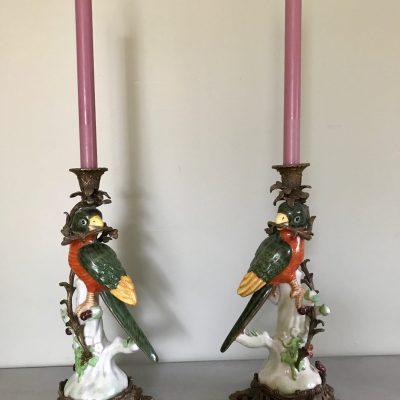 Parrot candlesticks