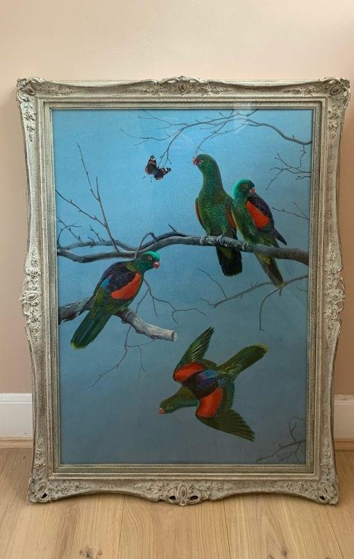 Parrots main