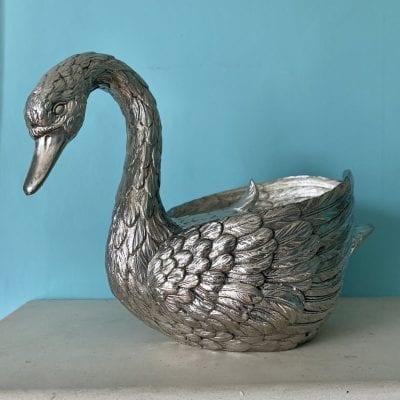 MM Swan Main 2