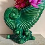 Green nautilus 2