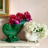Green vase and small nautilus