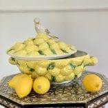 lemon dish 6